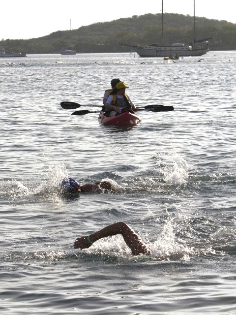 Triathlon competitors swim acroiss Christiansted Harbor in the 2010 Ironman.