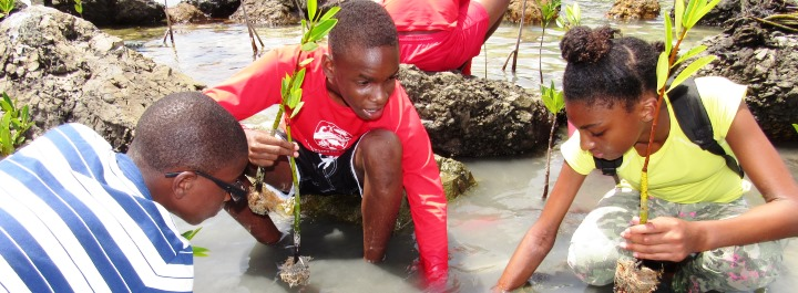 Youth Ocean Explorers to Expand Program With Donation From