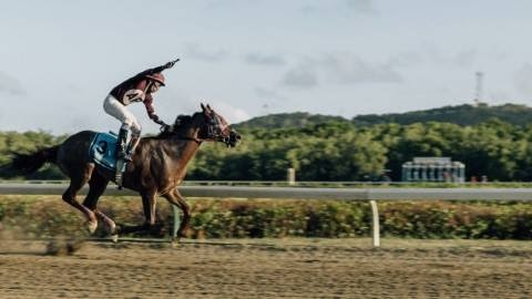 A recent court ruling may have a serious impact on plans for sports tourism based on horse racing in the U.S. Virgin Islands. (Source file photo)