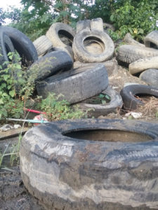 No tires have been removed from the Anguilla Landfill on St. Croix, despite an agreement that that would happen.