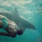 Prosterman swims with a dolphin in 1994.