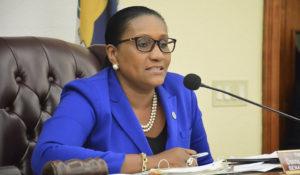 Sen. Allison Degazon (D-STT) at Tuesday's Finance Committee hearing. (Photo by Barry Leerdam, V.I. Legislature)