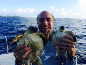 UVI professor Paul Jobsis holds up a pair of young Hawksbills, too small for tracking tags. (Photo by Scott Eanes)