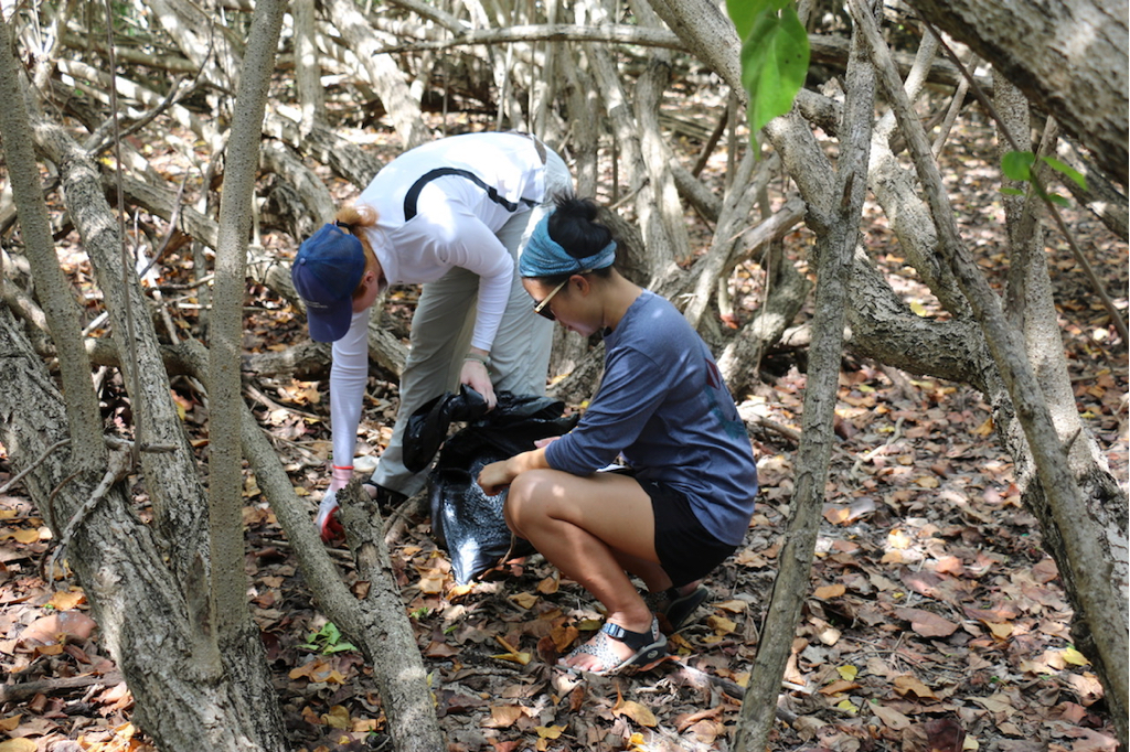 Out in the bush and along the access road, volunteers Kristal Seger, front, and Christine Vanover slowly and carefully check for rubbish under leaves and branches. (Source photo by Linda Morland)