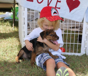 Dylan Garner has an armful of love from a small puppy, one that is ready to be adopted or flown to the states at the Paws From Paradise booth. (Source photo by Linda Morland)
