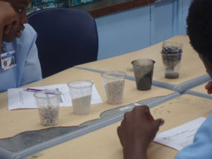 CAHS students experiment with which mix of large and small gravel and sand make the best water filter. (Photo provided by Howard Forbes Jr.)