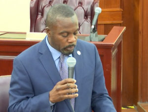 Sen. Marvin Blyden's motion to allow senators to attend the session remotely failed to get a second. (Image from V.I. Legislature video stream)