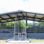 The livestock pens at the St. Croix abattoir. (Source photo by Linda Morland)