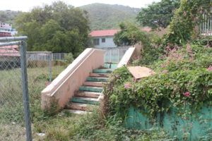 The steps leading down into the Savan Playground and Park are overgrown and in disrepair. (Source photo Bethaney Lee)